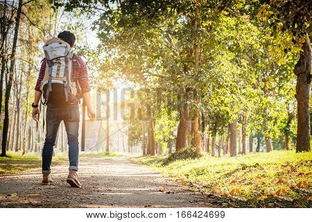 Young Man Standing Alone In Forest Outdoor With Sunset Nature On Background Travel Lifestyle And Sur