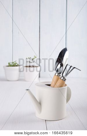 Garden tools. Shovel rake watering can flowerpots.