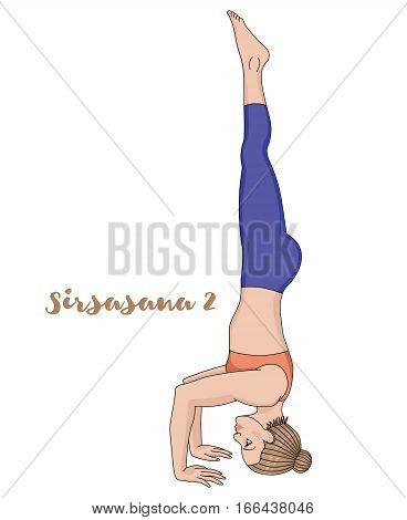 Women silhouette. Tripod Headstand yoga pose. Sirsasana 2. Vector illustration