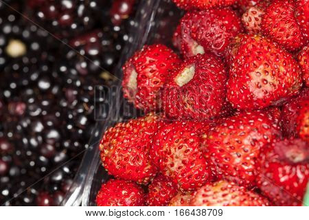 Strawberries and blackberries background. Foreground close up macro. Whole background. Intense red color. Close up very detailed .