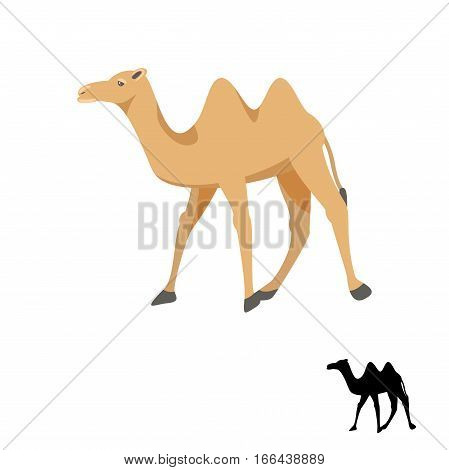 Camel silhouette vector illustration isolated on white. Two-humped desert animal.