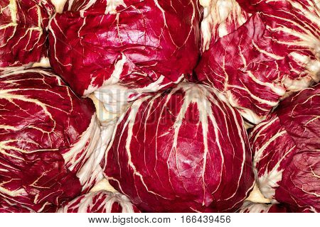 The red cabbage (purple-leaved varieties of Brassica oleracea Capitata Group) is a kind of cabbage, also known as purple cabbage, red kraut, or blue kraut after preparation.
