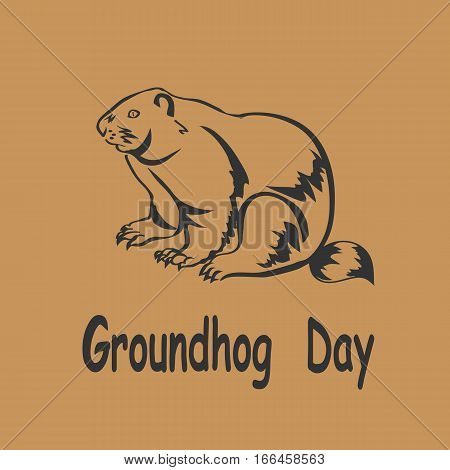vector illustration Groundhog . Groundhog Day .