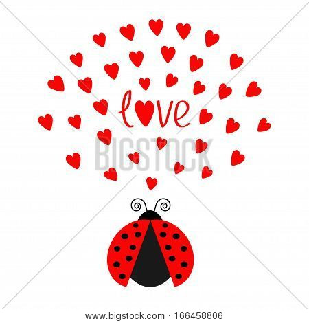 Red flying lady bug insect with hearts. Cute cartoon character. Word Love Greeting card. Happy Valentines Day. White background. Flat design. Vector illustration