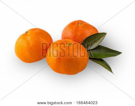 Three Ripe mandarines with leaves close-up on a white background. Tangerine orange with leaves on a white background. with clipping path