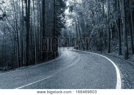 View of the road in the wet autumn forest under the pouring rain.