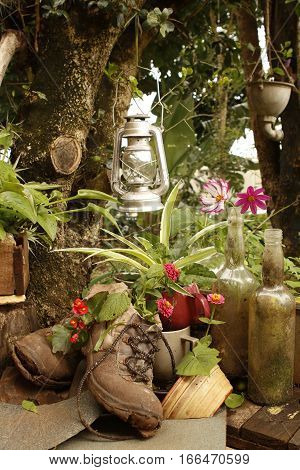 Outdoor garden still life with old boots a lantern flowers and trees in the background