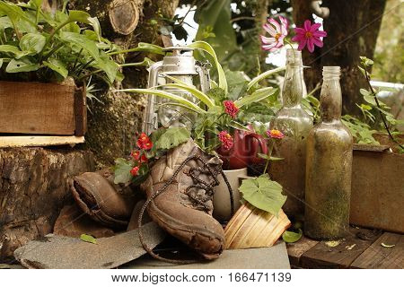 Garden still life with old bootsOutdoor garden still life with old boots a lantern flowers and trees in the background in a horizontal format