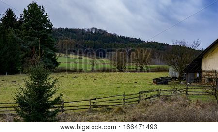view of the pasture and forest. In the edge is caravan and old pushcart.