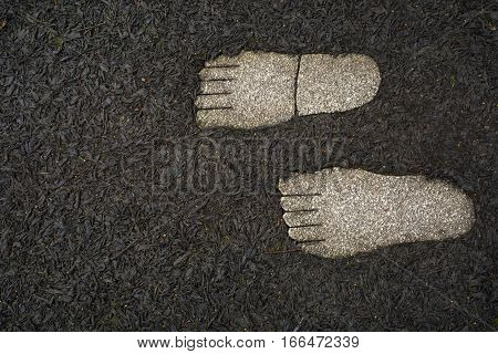 Prints of feet from granite on pine bark brown background