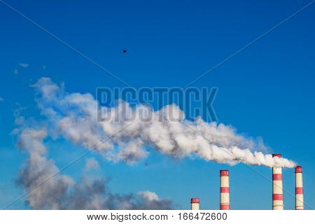 White smoke from the chimneys of the plant against the blue sky