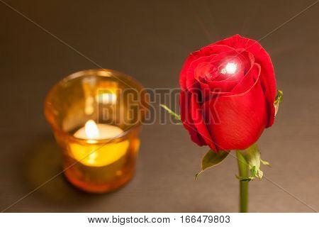 A single beautiful red rose and shiny wedding diamond ring inside with blurred background of candlelight in red glass romantic night concept.