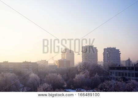 Early morning view on frozen Chisinau city downtown with crown plaza high buildings at sunrise and a bird, moldova