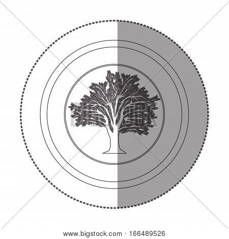 silhouette of sticker circular with tree with ramifications vector illustration
