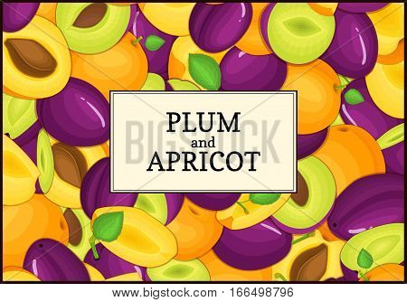 The rectangular frame on ripe apricot plum fruit background. Vector card illustration. Delicious juicy apricots plums whole, peeled, piece of half, slice, seed appetizing looking for packaging design
