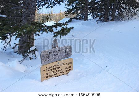 Trail signs buried in deep snow at Rocky Mountain National Park in Colorado.