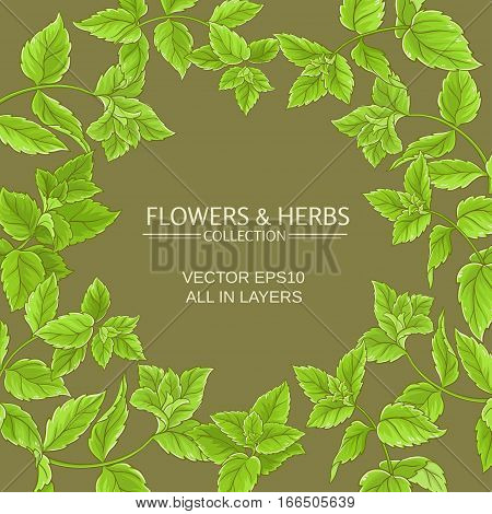 peppermint branches vector frame on color background