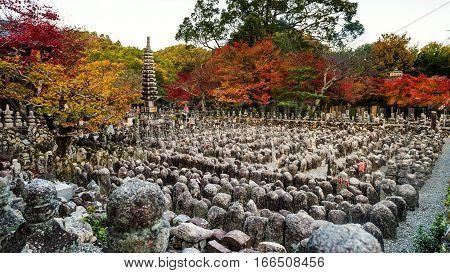 Adashino Nenbutsuji At Autumn, Arashiyama