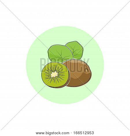Kiwifruit ,Round Icon Colorful Kiwi, Fruit Icon