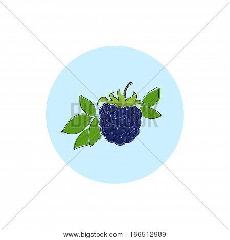 Blackberry, Round Icon Colorful Dewberry, Fruit  Berry Icon