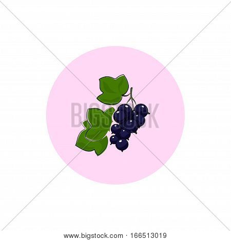 Blackcurrant ,Round Icon Colorful Blackcurrant, Fruit  Berry Icon