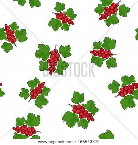 Seamless Pattern of Redcurrant, Fruit Pattern ,Berry Pattern
