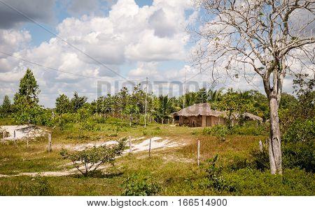 Rural Barreirinhas, North Brazil