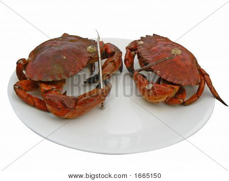 Two Crabs On A Plate