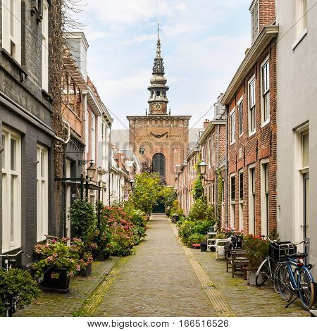 Pot plants and bicycles adding character to a cobbled side street in Haarlem Holland with the Grote Kerk (Great Church) visible in the distance.