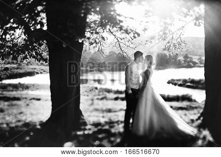 The tenderness brides stand near the lake