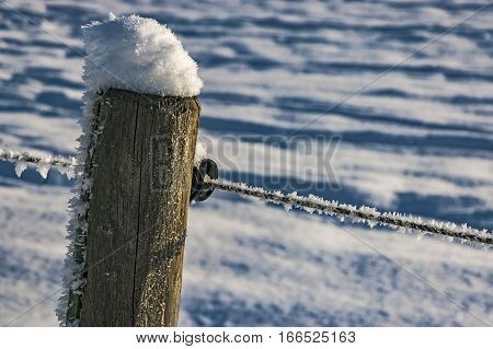 View of stake with wire on winter meadow