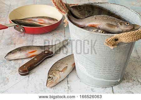 Small river fish, perch and roach, in a metal bucket and on a frying pan on a light wooden table.