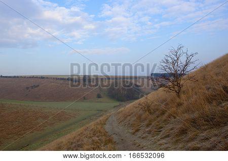 Hillside Footpath In Winter