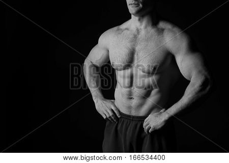 sexy muscular male torso and body with hairy chest of handsome macho man or athlete guy workout or training black and white