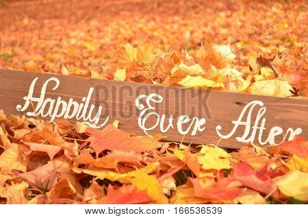 Handmade Happily Ever After sign in fallen Autumn leaves