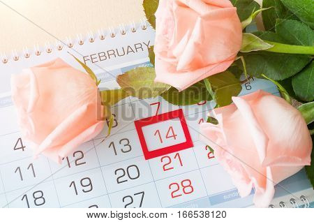 St Valentines day background - roses of light peach color on the calendar with framed St Valentines day date February 14. St Valentines day concept with St Valentines day postcard
