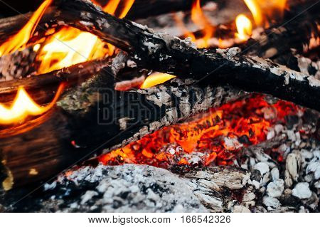 Beautiful Bonfire Closeup, Camping In Mountains, Travel Adventure Fireplace