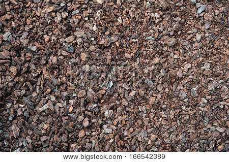 Earth ground covered with compost mulch fragment
