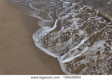 Light foamy wave rolls on a sandy beach