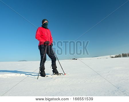 Tourist With Snowshoes Walk In Snowy Drift. Sunny Freeze Weather.
