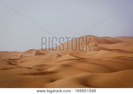 Picturesque dunes of Rub' al Khali desert close to Liwa Oasis in United Arab Emirates. The Rub' al Khali also known as the