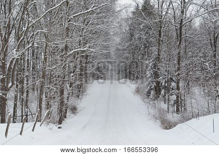 Snow covered Country road on winter day
