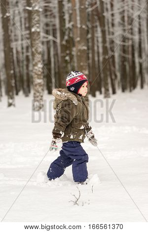 Little boy goes through the deep snow in the winter forest