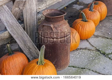 Rusted milk can against a rustic fence with pumpkins
