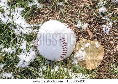 Baseball on grassy field covered in light dusting of snow off season