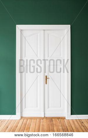 White Door, Green Walls -  Renovated Apartment