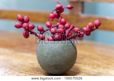 Tiny delicate red cone bud twigs in a plant pod cracked open like a planter wooden soft focus background