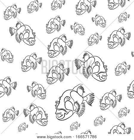 Titan triggerfish pattern, Balistoides viridescens background, drawn with a pencil red sea fish