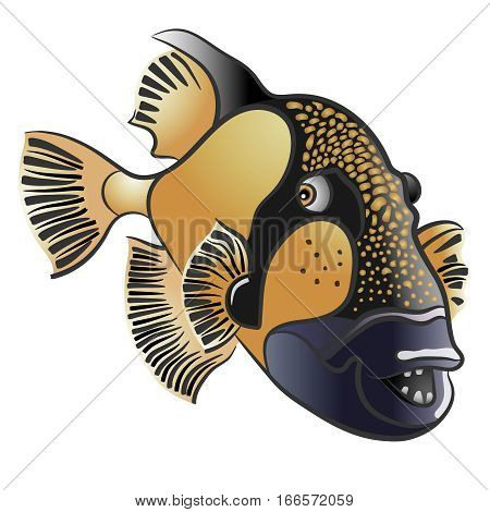 Titan triggerfish, Balistoides viridescens. red sea fish