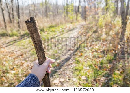 Closeup of hand holding a tree branch hiking stick in foreground of a late autumn forest